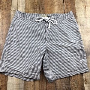 J CREW Longboard Blue White Striped Men's Shorts